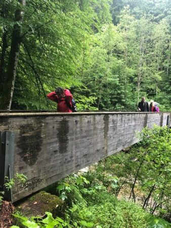 La Chue, un pont entre l'Homme et la Nature